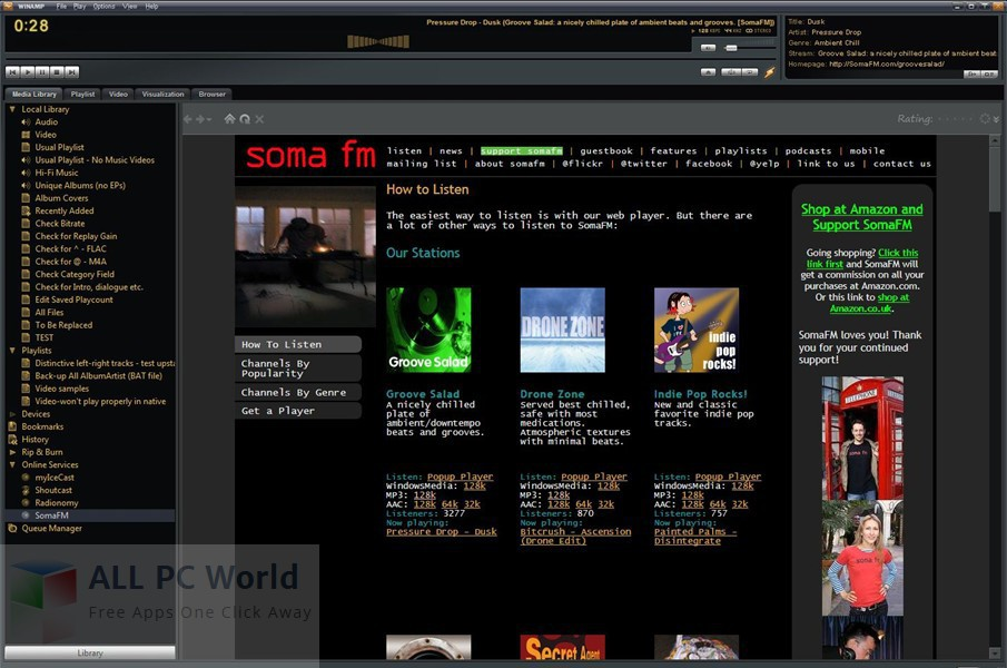 Winamp Full 5.666.3516 Review and Features