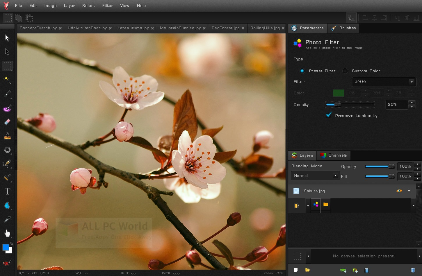 Bloom Image Editor Review