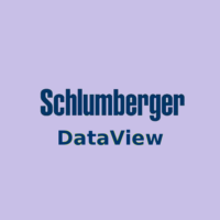 Schlumberger Dataview Free Download