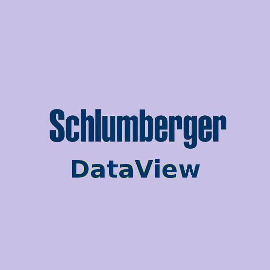 Schlumberger Dataview Free Download