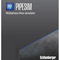 Schlumberger PIPESIM 2009 Free Download