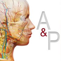 Visible Body Anatomy and Physiology 1.5 Free Download