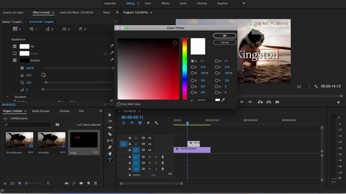 Adobe Premiere Pro CC 2019 v13.0