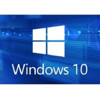 Download Windows 10 19H1 August 2019