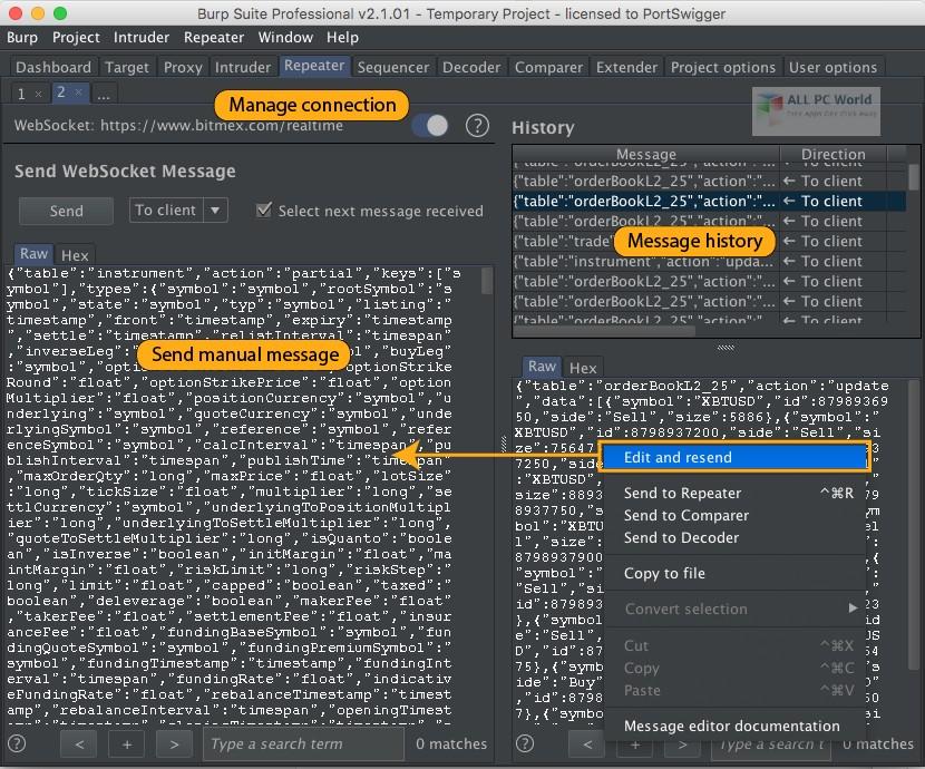 Burp Suite Professional 2.1 Download