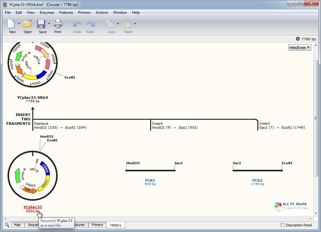 GSL Biotech SnapGene 5.0 Download