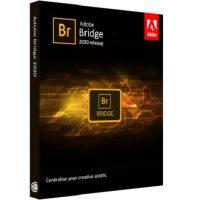 Download Adobe Bridge CC 2020 v10.0.1