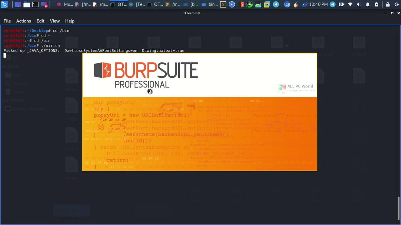 Burp Suite Professional 2020 Download