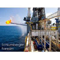 Download Schlumberger Flaresim 6.0