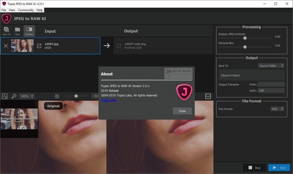 Topaz JPEG to RAW AI 2.2.1 Free Download