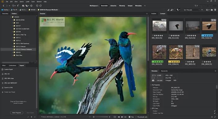 Adobe Bridge CC 2020 v10.1 One-Click Downloadv