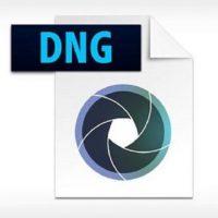 Download Adobe DNG Converter 12.4