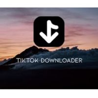 Download TikTok Downloader 3.0