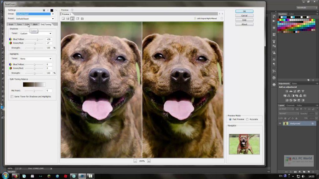 Imagenomic Realgrain 2.1.2 One-Click Download