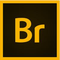 Download Adobe Bridge 2021 v11.0