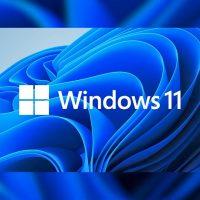 Windows 11 Pro Installer Free Download