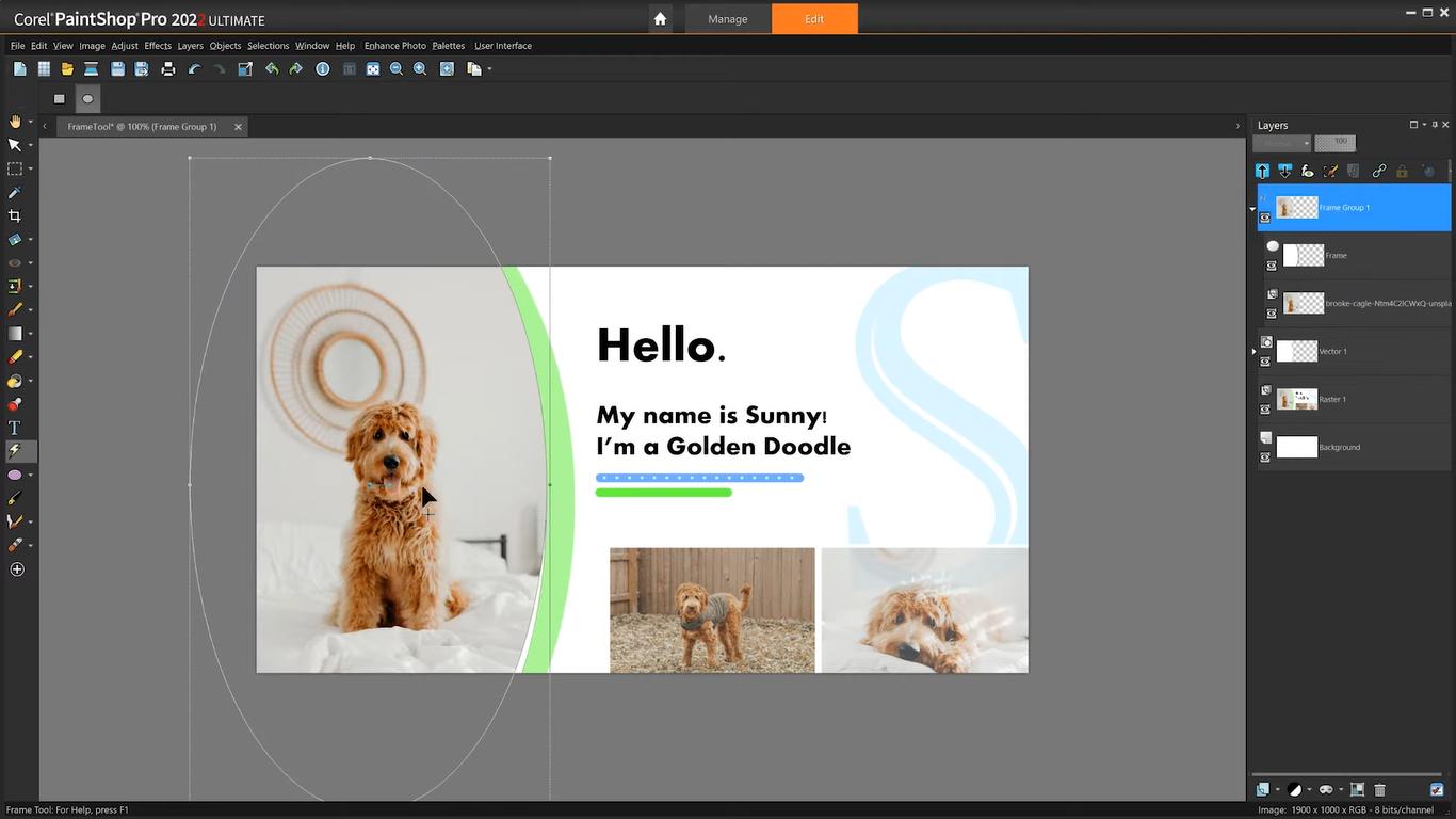 Corel PaintShop 2022 Ultimate Free Download