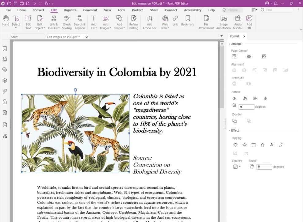 Foxit PDF Editor Pro 11 Free Download