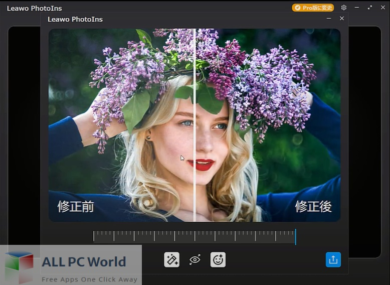 Leawo PhotoIns Pro Free Download